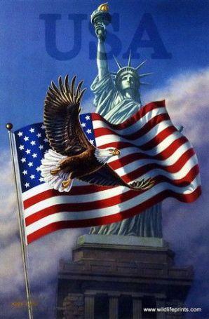d51cc21ef8b8188db665cc5fe2bc3d93--patriotic-symbols-patriotic-images